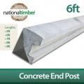 Concrete Reinforced End Posts 6ft