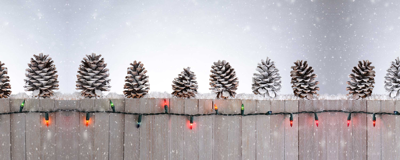 christmas-fencing