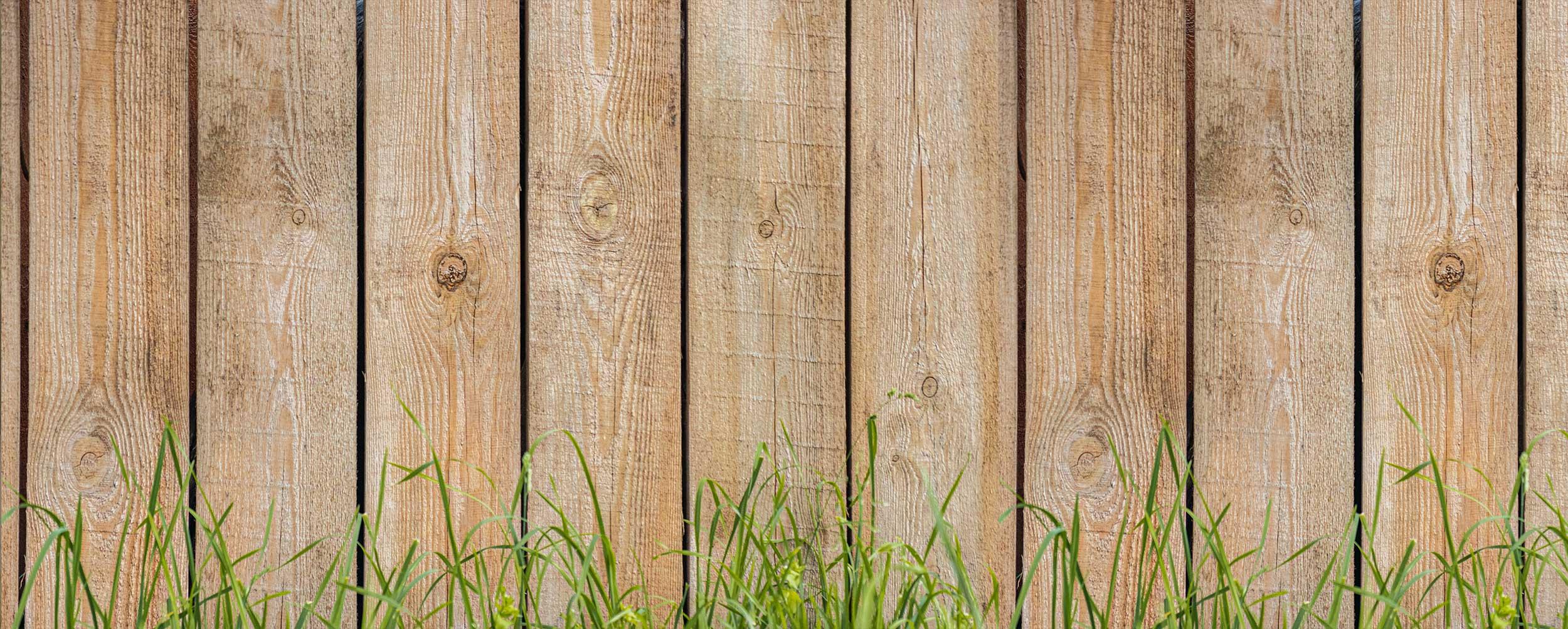 summer-fencing